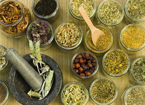 Herbes aromatiques/Tisanes